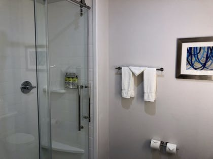 Bathroom Shower | Holiday Inn Express and Suites Houston Westchase - Westheimer