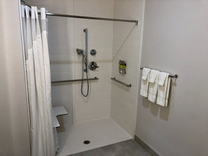 Bathroom   Holiday Inn Express and Suites Houston Westchase - Westheimer
