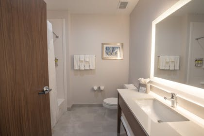 Bathroom | Holiday Inn Express and Suites Houston Westchase - Westheimer