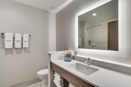 Bathroom | Holiday Inn Express And Suites Denton South