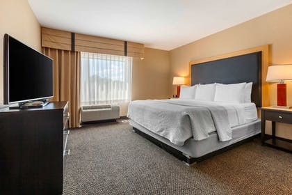 Room | Cambria Hotel Fort Collins