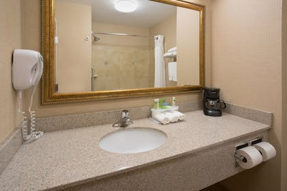 Bathroom | Holiday Inn Express Mitchell
