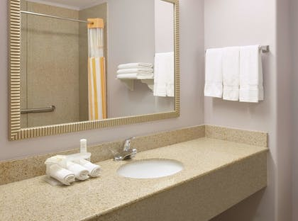 Bathroom | La Quinta Inn & Suites by Wyndham Corsicana