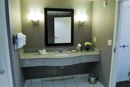 | 1 King Bed Executive Suite | Hilton Garden Inn Louisville Northeast