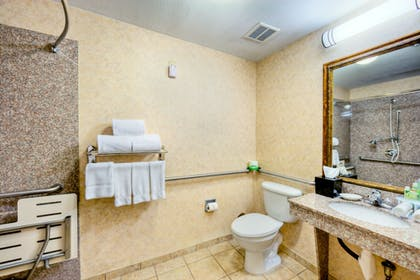 Bathroom | Holiday Inn Express And Suites Granbury