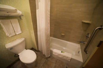 Bathroom | Holiday Inn Express Hotel & Suites Atlanta East - Lithonia