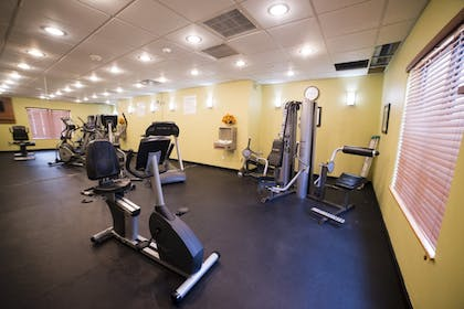 Fitness Facility | Holiday Inn Express Hotel & Suites Atlanta East - Lithonia