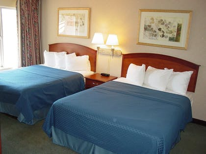 Guestroom | Quality Suites Central