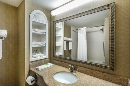 Bathroom | Holiday Inn Express Hotel & Suites Tilton - Lakes Region