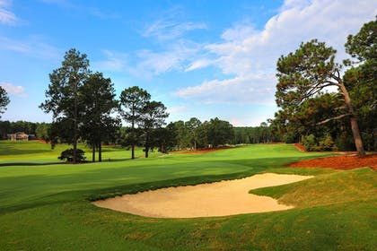 Golf | Pine Needles Lodge & Golf Club
