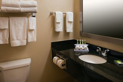 Bathroom | Holiday Inn Express & Suites Chicago West-Roselle