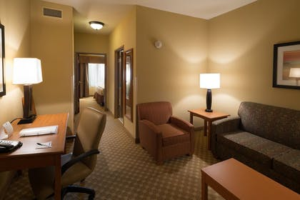 Living Area | Holiday Inn Express & Suites Chicago West-Roselle