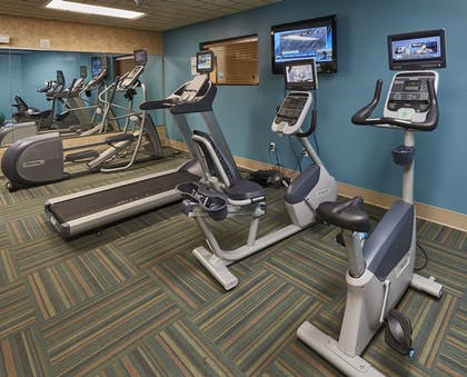 Gym | Holiday Inn Express & Suites Bradenton East-Lakewood Ranch