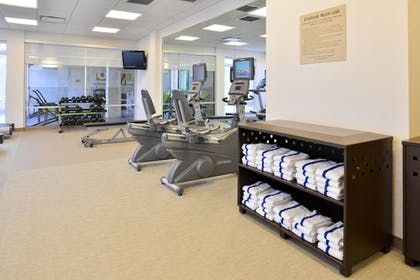Sports Facility | SpringHill Suites by Marriott Detroit Metro Airport Romulus