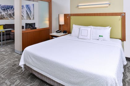 Guestroom | SpringHill Suites by Marriott Detroit Metro Airport Romulus