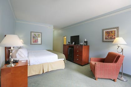Guestroom | Holiday Inn Express Tampa N I-75 - University Area