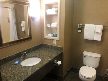 In-Room Amenity   Holiday Inn Express Hotel Ooltewah Springs-Chattanooga