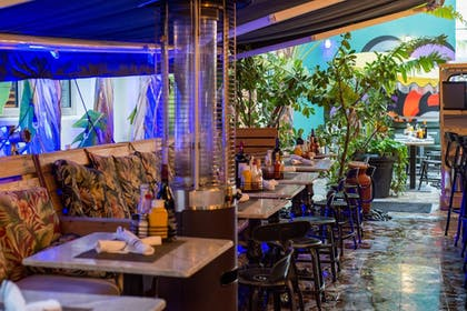 Dining | Riviera Suites South Beach, a South Beach Group Hotel