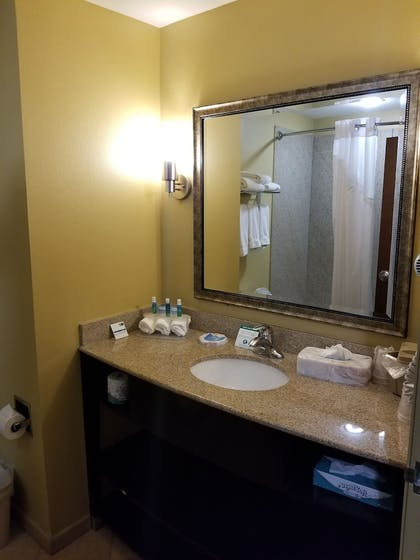 Bathroom   Holiday Inn Express & Suites Gulf Shores