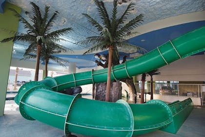 Waterslide | Wyndham Vacation Resorts Towers on the Grove
