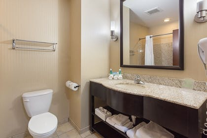 In-Room Amenity | Holiday Inn Express Hotel & Suites BYRAM