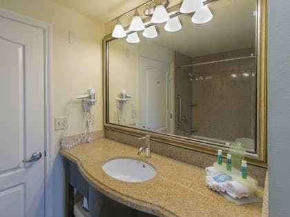 Bathroom | Holiday Inn Express & Suites, International Drive