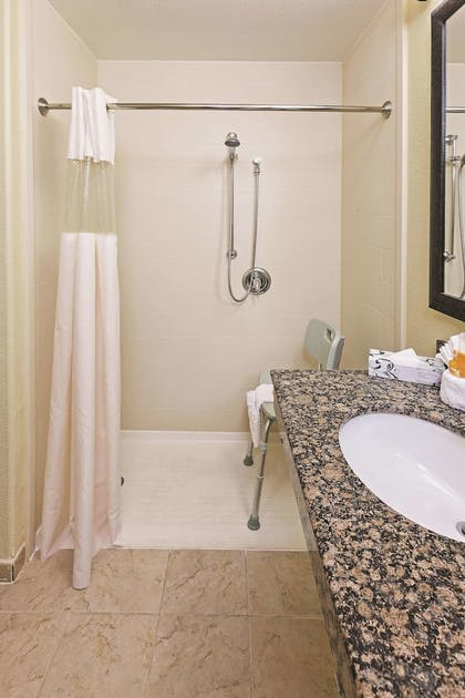 Bathroom | La Quinta Inn & Suites by Wyndham DFW Airport West - Bedford