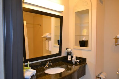 Bathroom | Holiday Inn Express Hotel & Suites Odessa