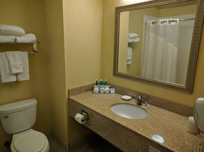 Bathroom Sink | Holiday Inn Express Hotel & Suites Merced