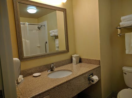 Bathroom | Holiday Inn Express Hotel & Suites Merced
