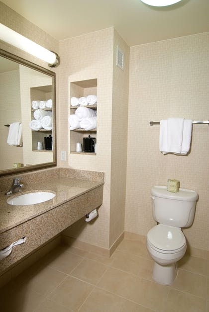 Bathroom | Holiday Inn Express Hotel & Suites Twin Falls