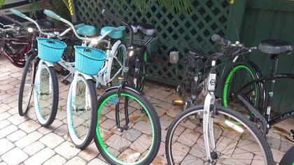 Bicycling | The Caribbean Court Boutique Hotel