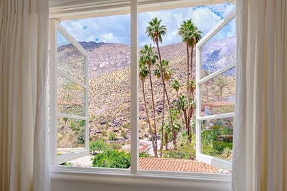 View from Room | The Willows Historic Palm Springs Inn