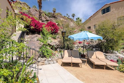 Garden View | The Willows Historic Palm Springs Inn