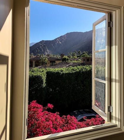 Guestroom View | The Willows Historic Palm Springs Inn