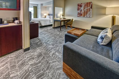 Living Area | Springhill Suites by Marriott New Bern