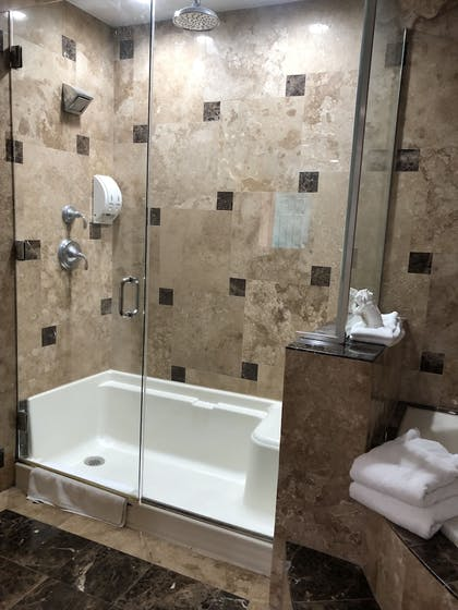 Bathroom Shower | Travelers Inn