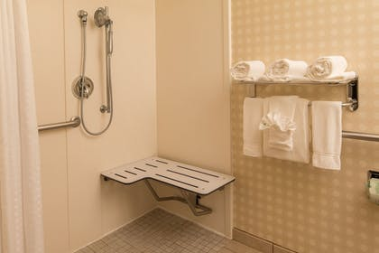 Room   Holiday Inn Express Hotel & Suites Greensboro Airport Area