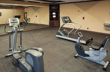 Fitness Facility | Holiday Inn Express Hotel & Suites Austin South-Buda