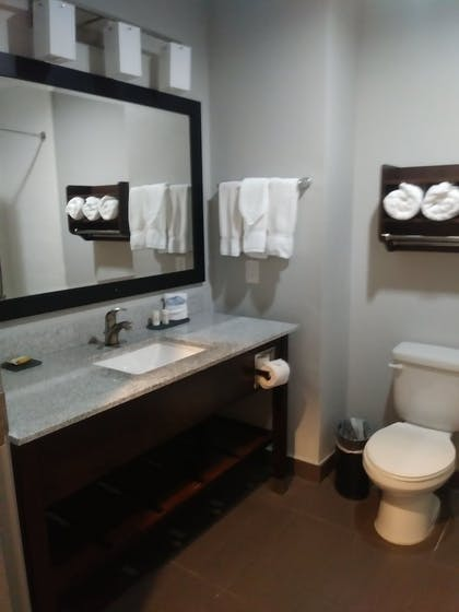 Bathroom | La Quinta Inn & Suites by Wyndham Fort Worth Eastchase