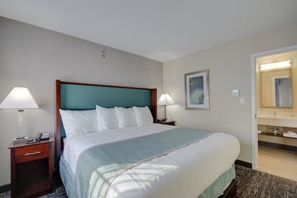Guestroom | Best Western Hampshire Inn