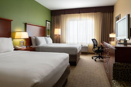 Guestroom   Holiday Inn Express Hotel & Suites Denver Airport