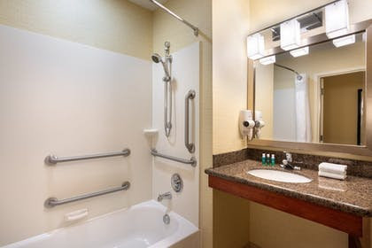 Bathroom | Holiday Inn Express Hotel & Suites Denver Airport