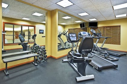 Fitness Facility | Holiday Inn Express Hotel & Suites East Lansing