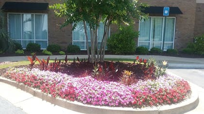 Courtyard | Hampton Inn & Suites Phenix City- Columbus Area