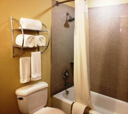 Bathroom | Holiday Inn Express & Suites Waller - Prairie View