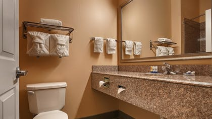 Bathroom | Best Western Plus New Caney Inn & Suites