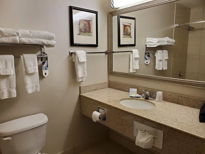 Bathroom | Holiday Inn Express Hotel and Suites Mankato East