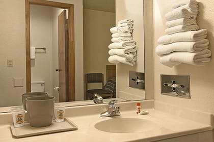Bathroom | Holiday Inn Express Hotel and Suites Fort Stockton