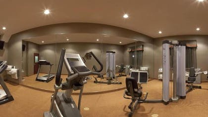 Gym | Holiday Inn Express Hotel and Suites Fort Stockton